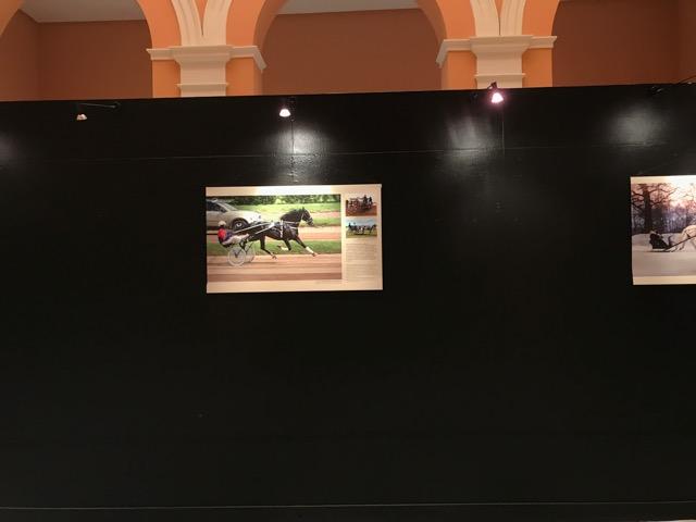 El Ayuntamiento de Sevilla albergó la exposición 'Trotón de Orlov y Troika Rusa'