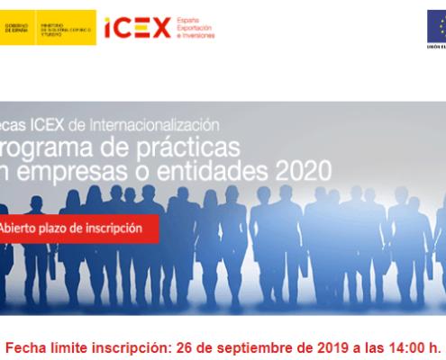 Becas ICEX de internacionalización